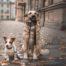 Собаки город